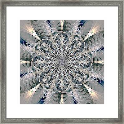 Frost Seal Framed Print