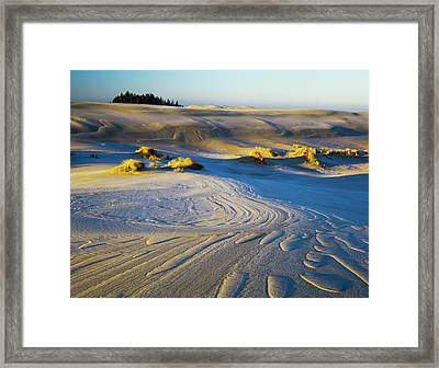 Frost Turns The Sand White Framed Print by Robert L. Potts