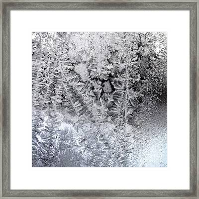 Frost Windowpane In Maine Number One Framed Print