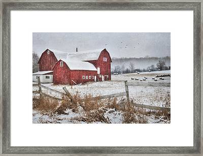 Frosted Hay Bales Framed Print