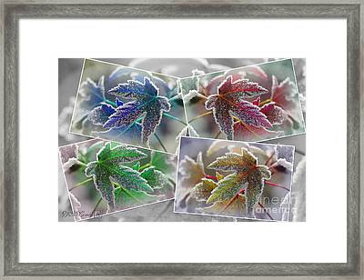 Frosted Maple Leaves Pop Art Shades Framed Print by J McCombie