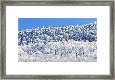 Frosted Mountainside Framed Print