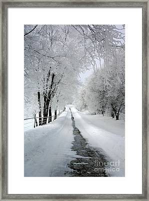 The Long Frosted Road Framed Print