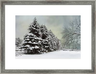 Frosted Framed Print by Robin-Lee Vieira