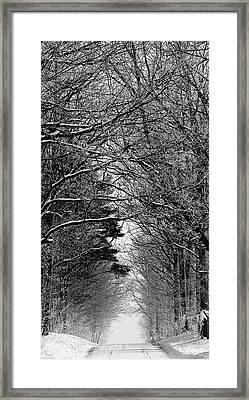 Frosted Steps II Framed Print