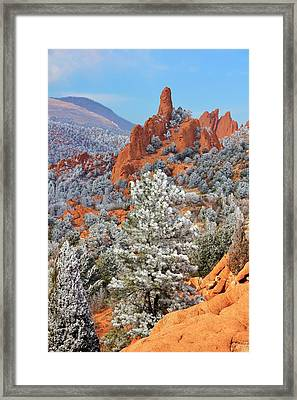 Frosted Wonderland 1 Framed Print