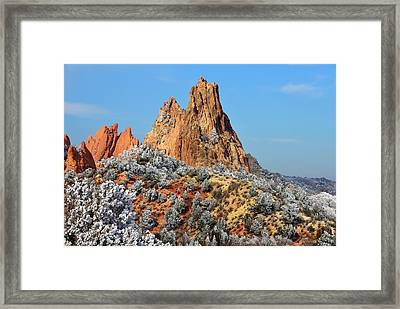 Frosted Wonderland 4 Framed Print