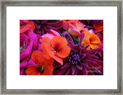 Framed Print featuring the photograph Dewy Blooms by Jeanette French