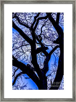 Frosty Blue Abstract Framed Print by Mitch Shindelbower