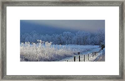 Frosty Cades Cove Shoot Framed Print by Douglas Stucky