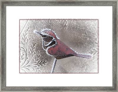 Framed Print featuring the photograph Frosty Cardinal by Patti Deters