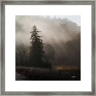 Frosty Foggy Morning Framed Print