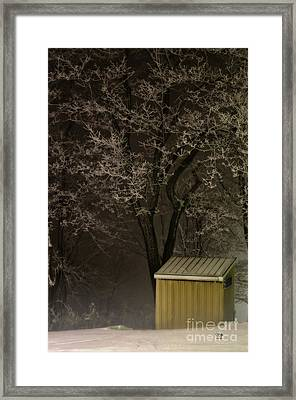 Frosty Foggy Night Framed Print
