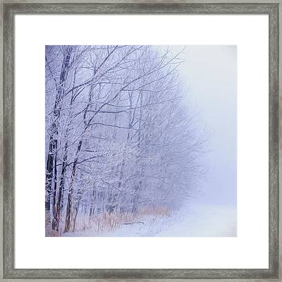 Frosty Forest Frontier - Artistic  Framed Print by Chris Bordeleau
