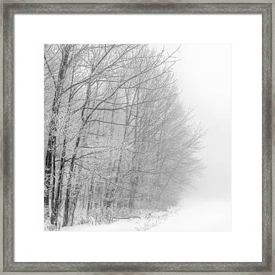 Frosty Forest Frontier Framed Print