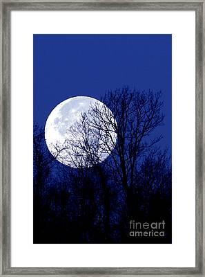Frosty Moon Framed Print by Thomas R Fletcher