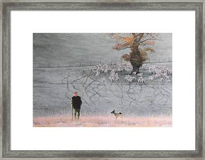 Frosty Morning Framed Print by Harry Robertson