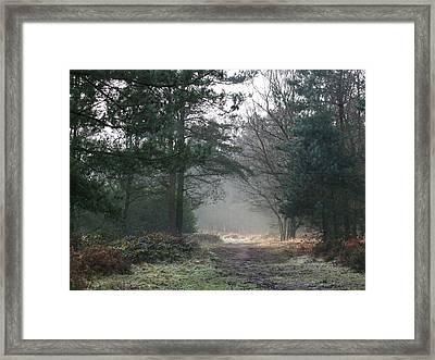 Frosty Morning Framed Print by Jean Walker