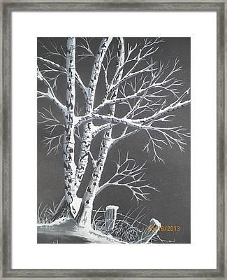 Frosty Night Framed Print by Wolfgang Pranke