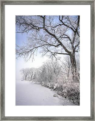 Framed Print featuring the photograph Frosty Shoreline by Kari Yearous