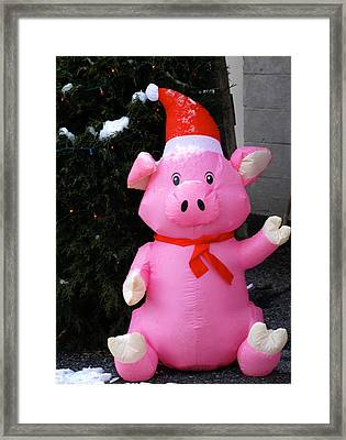 Frosty The Pig Framed Print