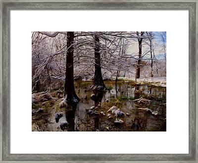 Frosty Framed Print by Tom Druin