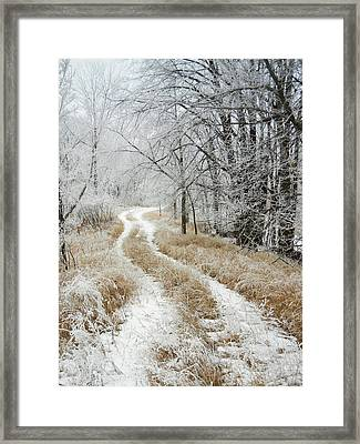 Framed Print featuring the photograph Frosty Trail by Penny Meyers