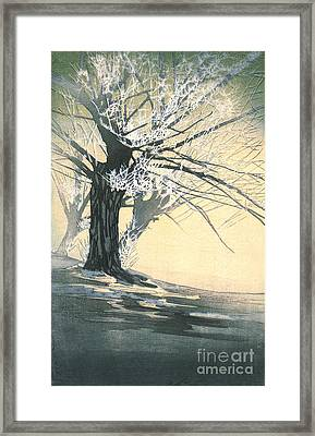 Frosty Tree 1920 Framed Print