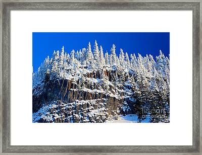 Frosty Trees Framed Print by Inge Johnsson