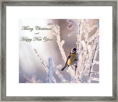Frosty With Christmas Greetings Framed Print