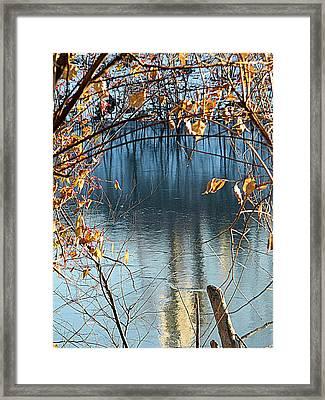 Frozen Blue Framed Print by Kathy Barney