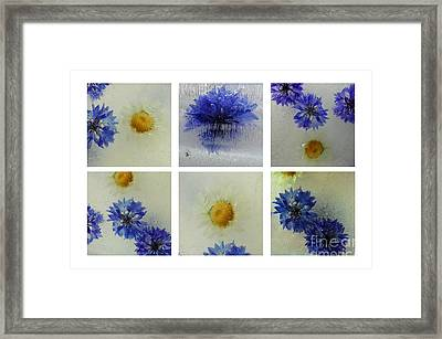 Frozen Blue Framed Print by Randi Grace Nilsberg