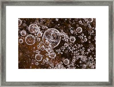 Frozen Bubbles Framed Print by Anne Gilbert