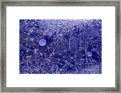 Frozen Bubbles In The Merced River Yellowstone Natioinal Park Framed Print