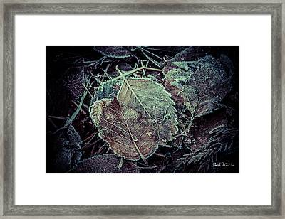Frozen Framed Print by Charlie Duncan