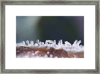 Frozen City Framed Print by Shelby Waltz