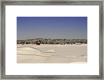 Frozen Cranberries Framed Print