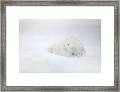 Frozen Dreams Framed Print