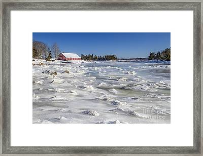 Frozen Framed Print by Evelina Kremsdorf