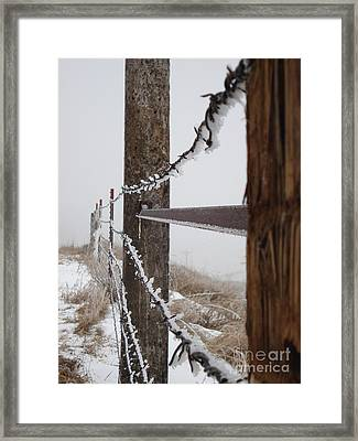 Frozen Fence Line Framed Print