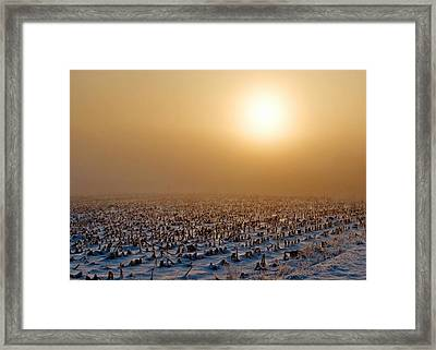 Frozen Field Framed Print by Todd Klassy