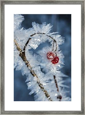 Frozen Food Framed Print