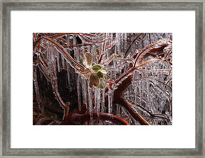 Frozen Icicles At Zion Framed Print