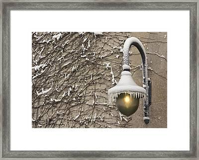 Frozen Illumination Framed Print