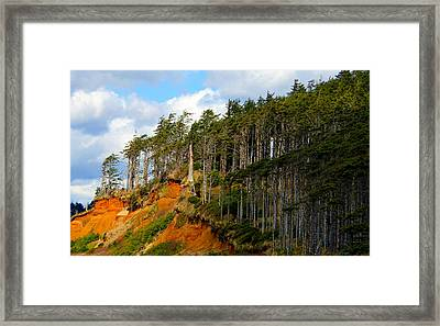 Framed Print featuring the photograph Frozen In Time by Jeanette C Landstrom