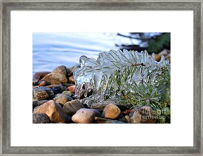 Frozen In Time Framed Print by Leone Lund