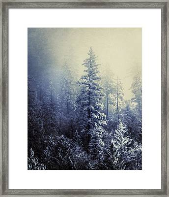 Frozen In Time Framed Print by Melanie Lankford Photography