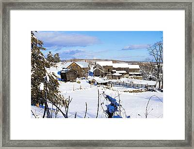 Frozen In Time Two In Color Framed Print