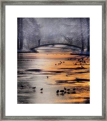 Frozen Lake Framed Print by Cristian Andreescu