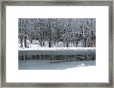 Frozen Framed Print by Linda Segerson